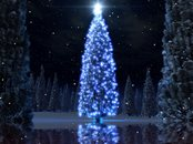 Christmas Tree Animation Wallpaper