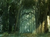 Bosque Oscuro Animation Wallpaper
