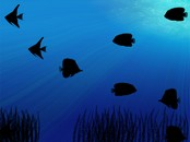 Sombras de Acuario Animation Wallpaper